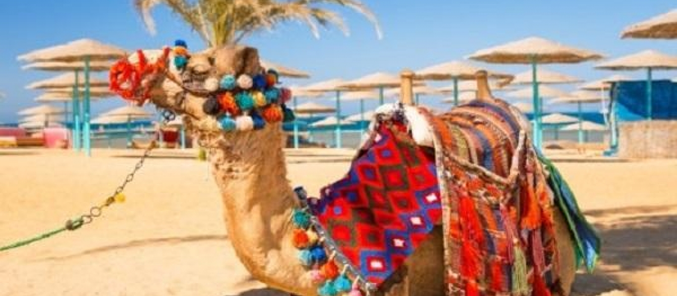 Early Booking Hurgada August 2018